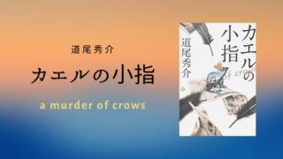 道尾秀介さんの小説カエルの小指レビュー